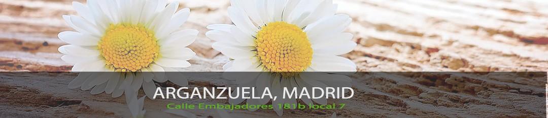 Floristería en Arganzuela Madrid ¿Quiénes somos?